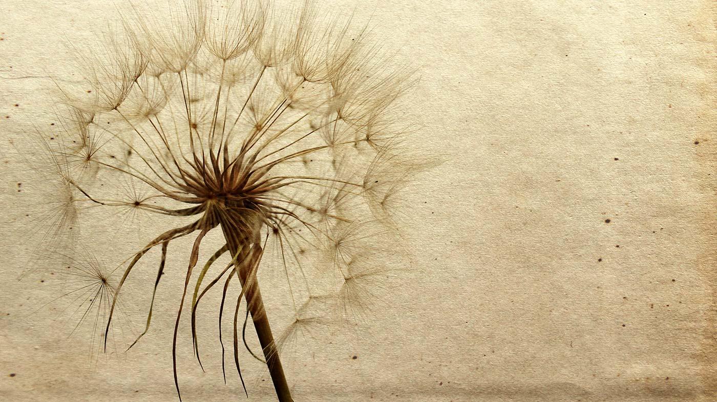 Манипуляции: как их распознать и как от них защититься